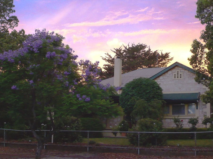 Angaston Rose BB - Accommodation Australia