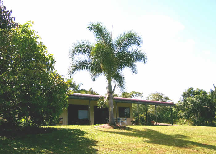 Daintree Mountain View Retreat and Vanilla Beans - Accommodation Australia