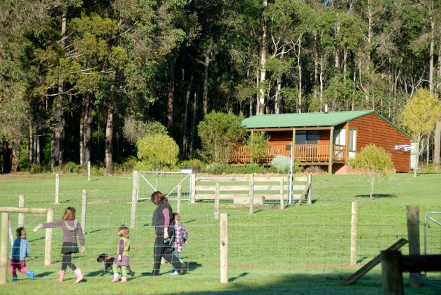Diamond Forest Farm Stay - Accommodation Australia