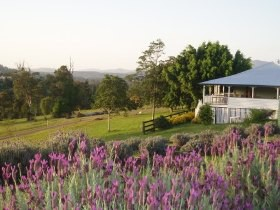 Blue Ridge Lavender Farm And Retreat - Accommodation Australia