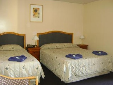 Mudgee Motor Inn - Accommodation Australia