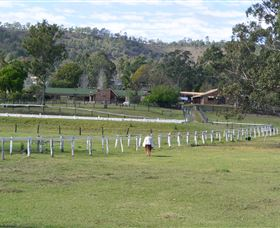 Kellarni Downs Farmstay-Scenic Rim - Accommodation Australia