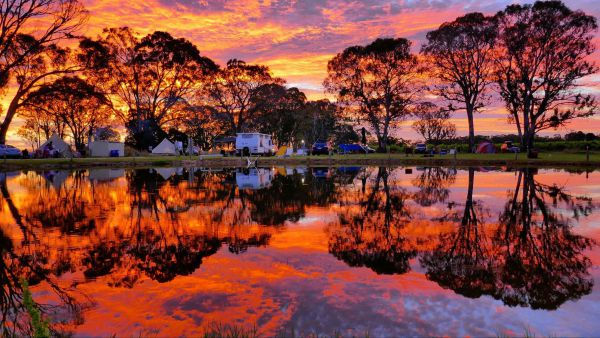 Coonawarra Bush Holiday Park - Accommodation Australia