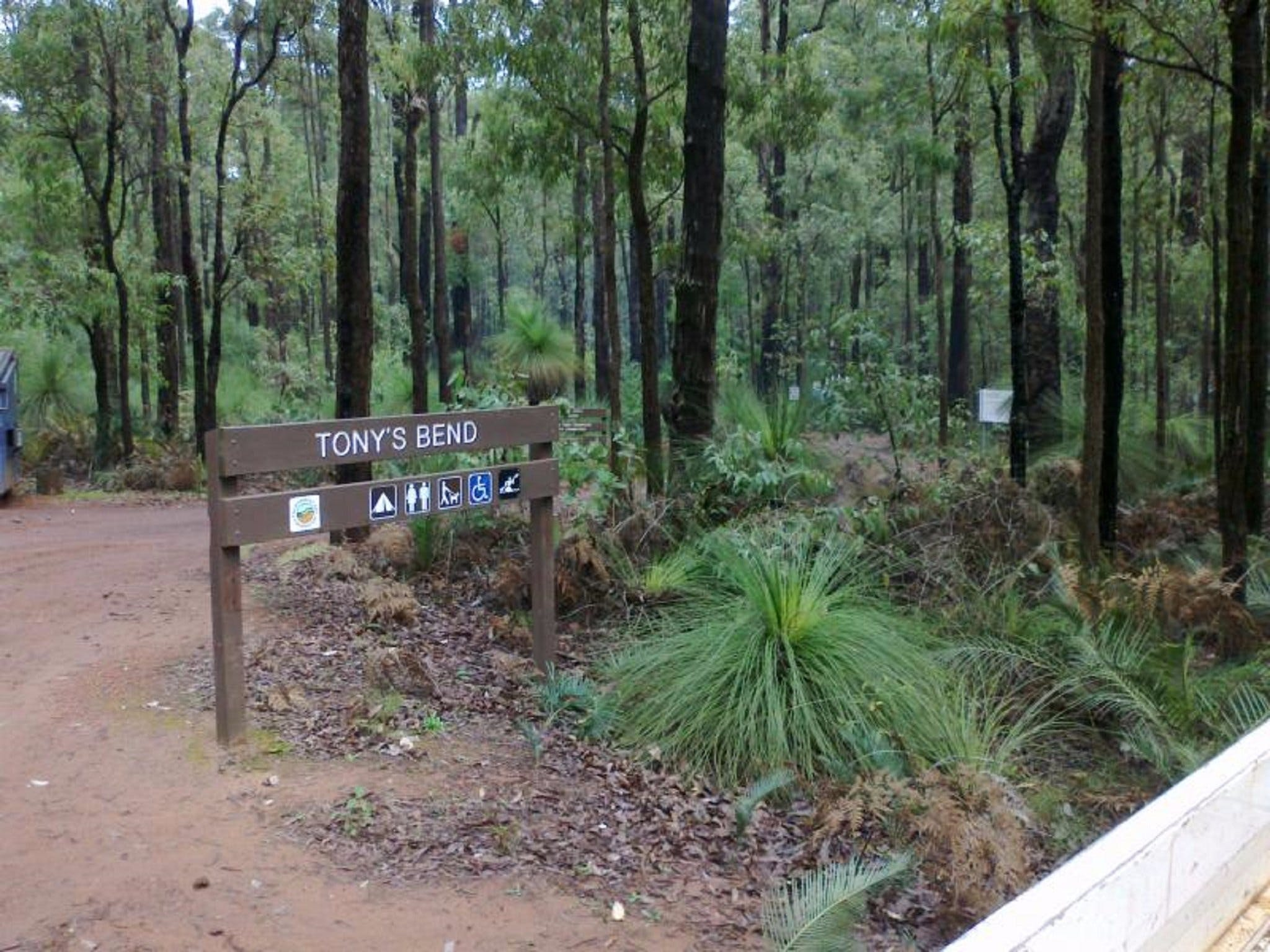 Tonys Bend Campground at Lane Poole Reserve - Accommodation Australia
