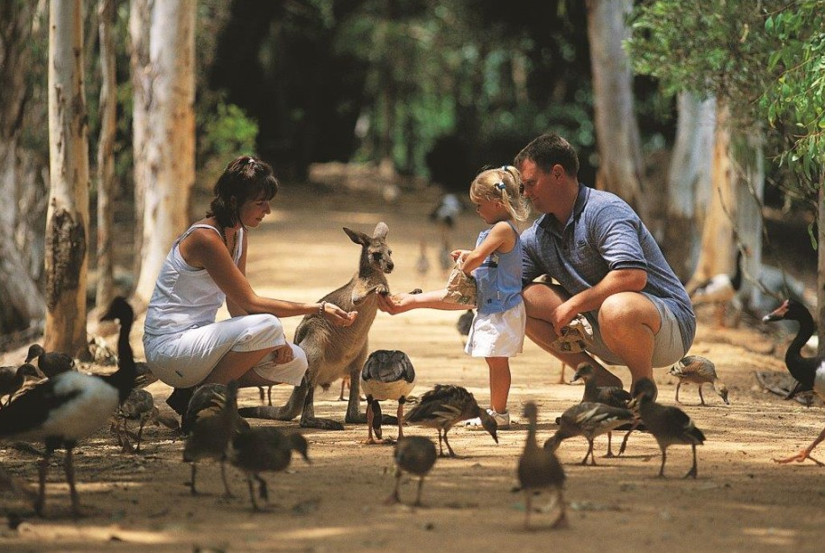 Billabong Sanctuary - Accommodation Australia