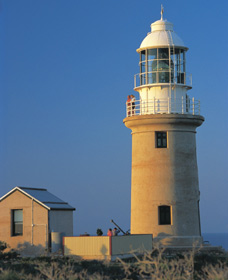 Vlamingh Head Lighthouse - Accommodation Australia