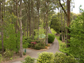 Mount Lofty Botanic Garden - Accommodation Australia