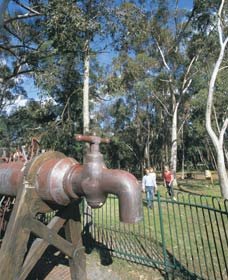 Mundaring Community Sculpture Park - Accommodation Australia