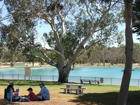 Naracoorte Nature Park and Swimming Lake - Accommodation Australia