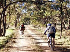 Bike About Mountain Bike Tours And Hire - Accommodation Australia