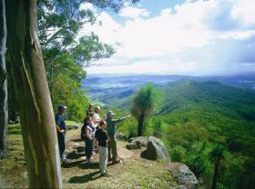 Gold Coast Hinterland Great Walk - Accommodation Australia