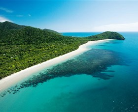 Cape Tribulation Daintree National Park - Accommodation Australia