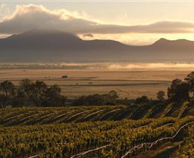 Montara Wines - Accommodation Australia