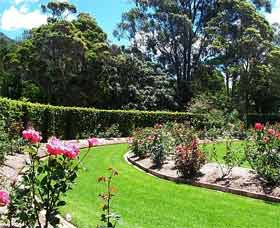 Wollongong Botanic Garden - Accommodation Australia