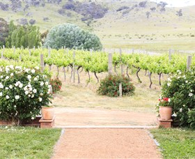 Brindabella Hills Winery - Accommodation Australia