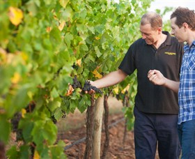 Fratin Brothers Vineyard - Accommodation Australia