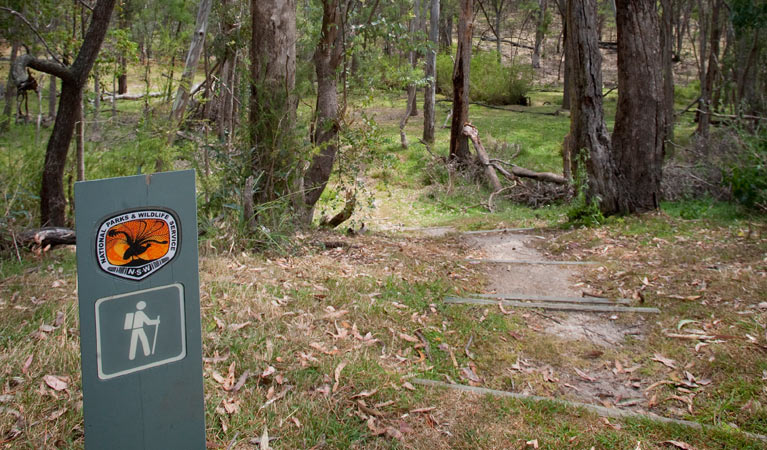 Moolarben picnic area - Accommodation Australia