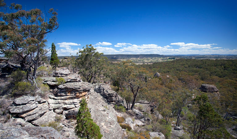 Munghorn Gap Nature Reserve - Accommodation Australia