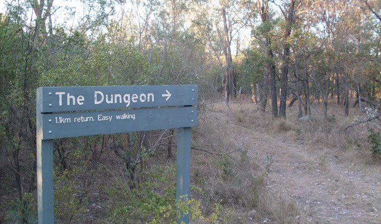Dungeon lookout - Accommodation Australia