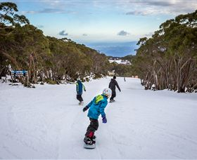 Mt Baw Baw Alpine Resort - Accommodation Australia