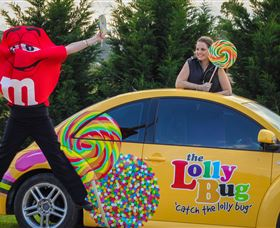The Lolly Bug - Accommodation Australia
