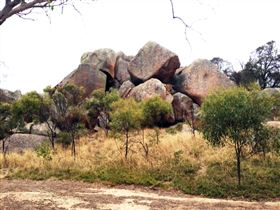 Mount Boothby Conservation Park - Accommodation Australia