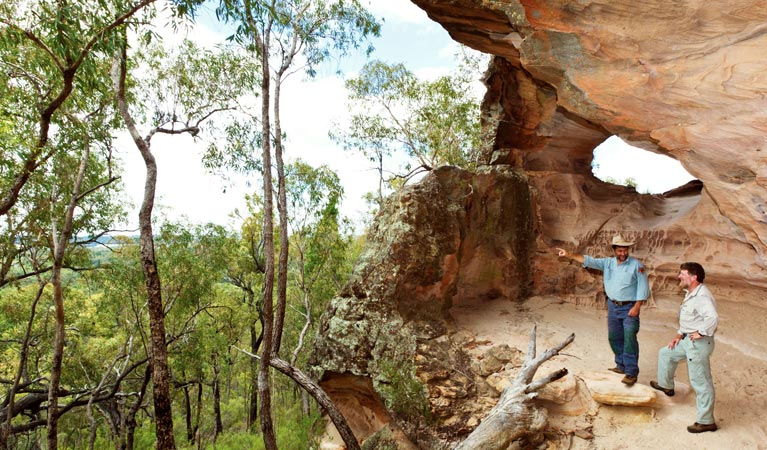 Pilliga National Park - Accommodation Australia