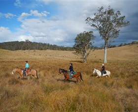 Chapman Valley Horse Riding - Accommodation Australia