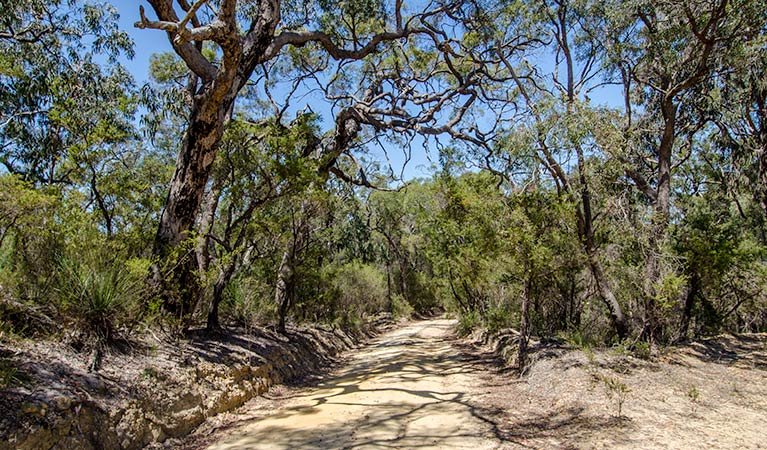 Howes trail - Accommodation Australia
