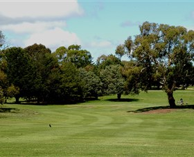 Cooma Golf Club - Accommodation Australia
