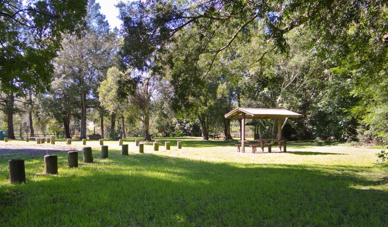 Moore Park picnic area - Accommodation Australia