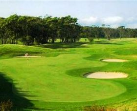Shoalhaven Heads Golf Club - Accommodation Australia