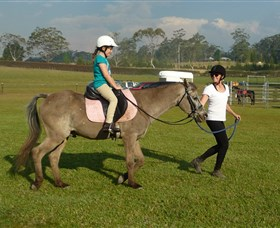 Port Macquarie Horse Riding Centre - Accommodation Australia