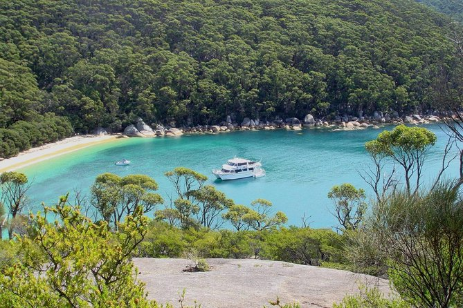 Wilsons Promontory Full Day Cruise - Accommodation Australia