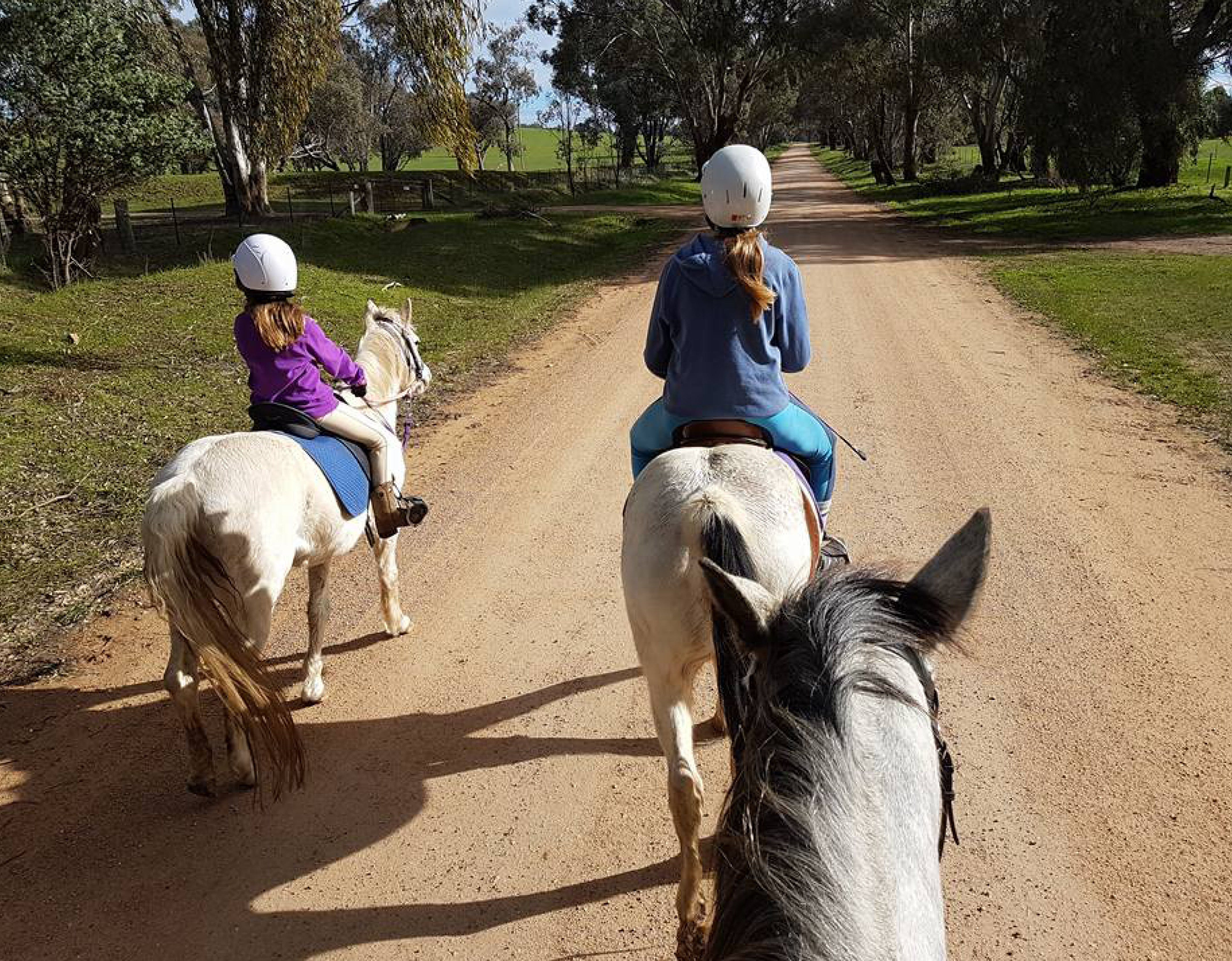 Bits and Boots Pony Rides - Accommodation Australia