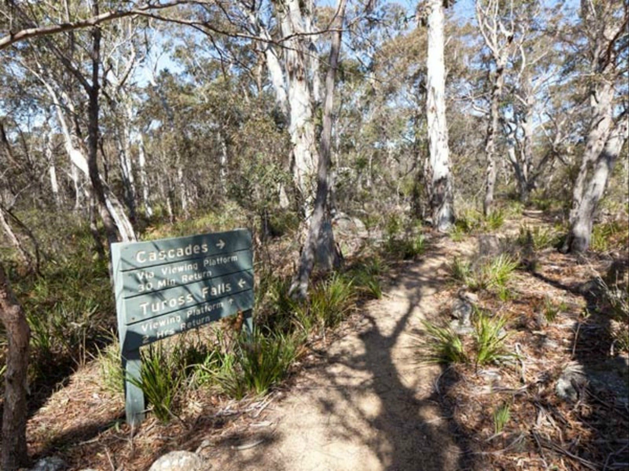Cascades walking track and viewing platform - Accommodation Australia