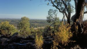 Heathcote-Graytown National Park - Accommodation Australia