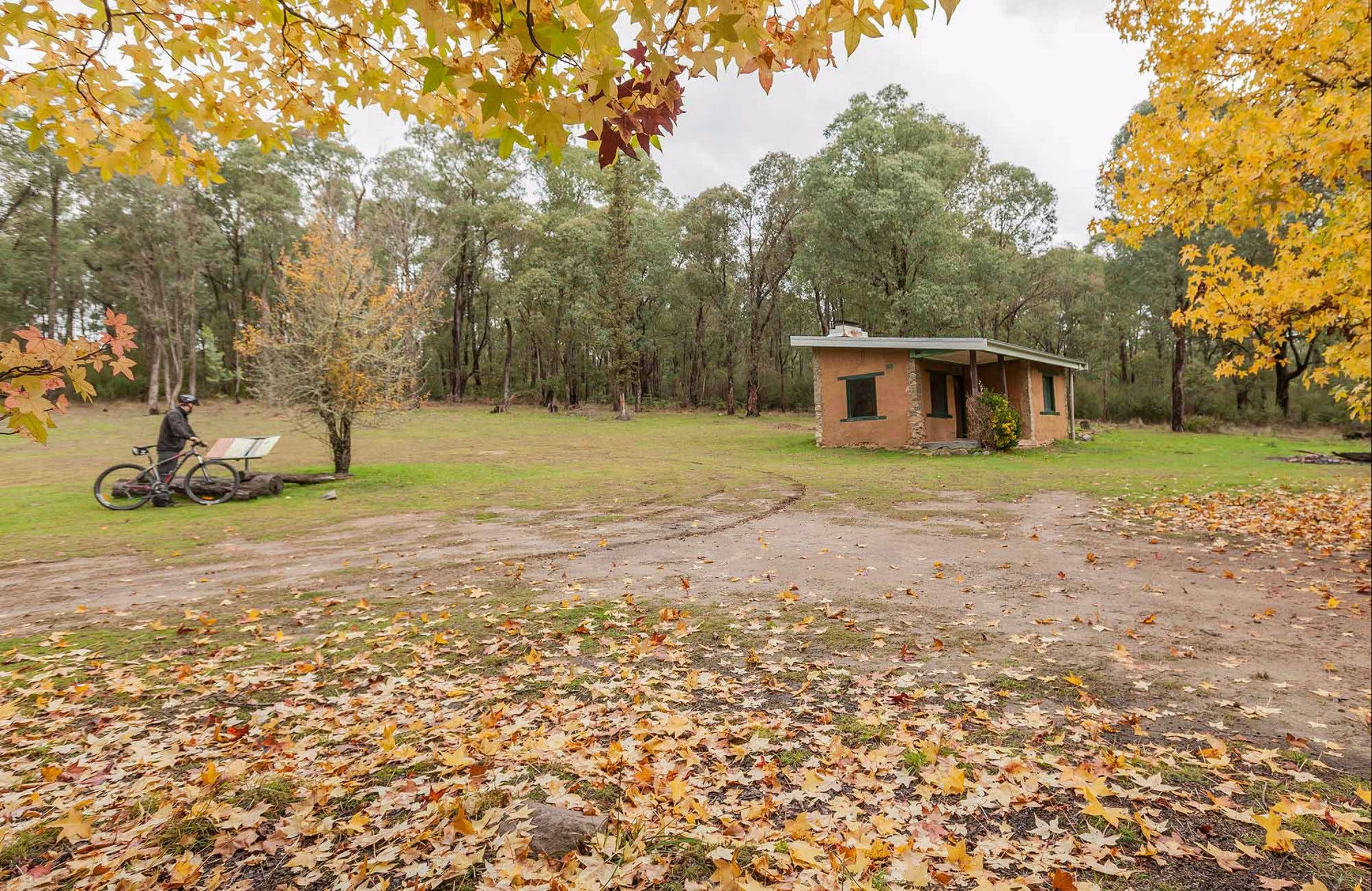 Major Clews Hut Walking Track - Accommodation Australia