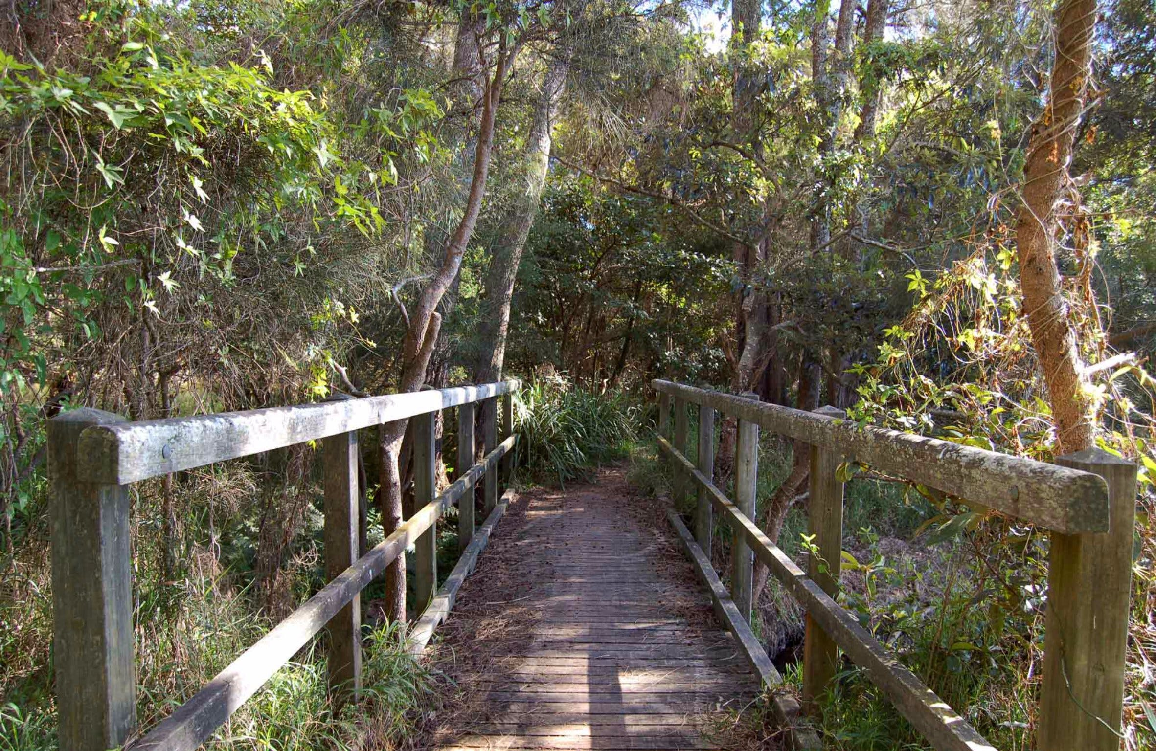 Awaba Bay Foreshore Walk - Accommodation Australia