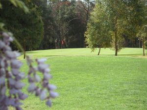 Springwood Country Club - Accommodation Australia