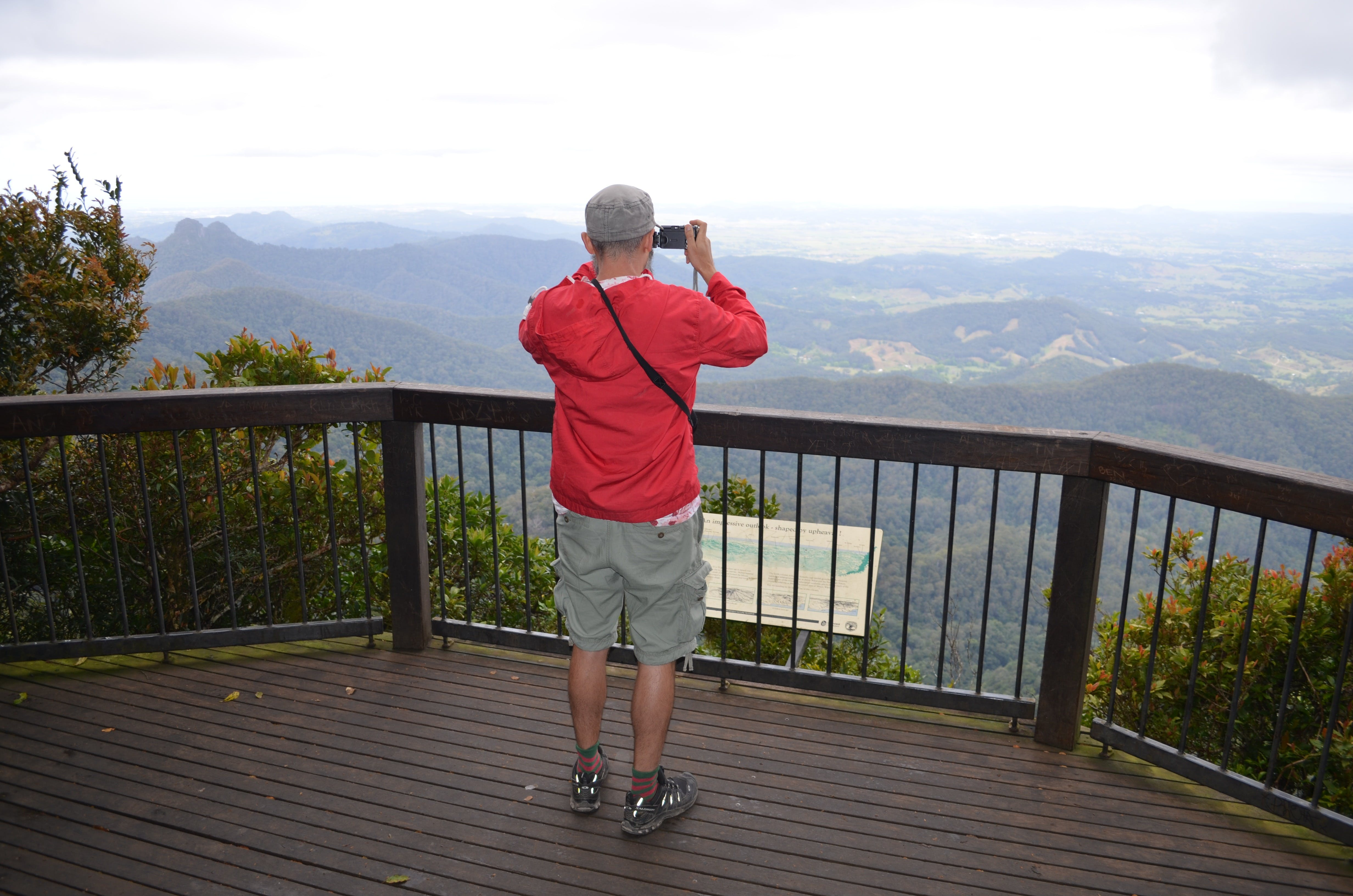 Best of All lookout track Springbrook National Park - Accommodation Australia