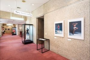 Tony Gould Gallery - Accommodation Australia