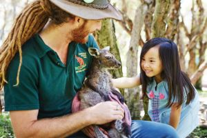 Swan Valley Kids In The Valley Trail - Accommodation Australia