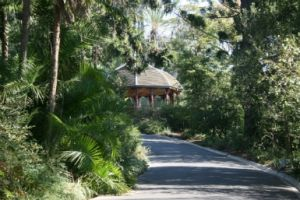 Royal Botanic Gardens Victoria - Accommodation Australia