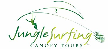 Jungle Surfing Canopy Tours and Jungle Adventures Nightwalks - Accommodation Australia