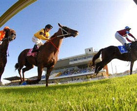 Wyong Race Club - Accommodation Australia