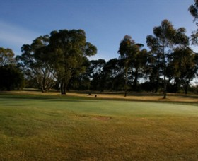 Winchelsea Golf Club - Accommodation Australia