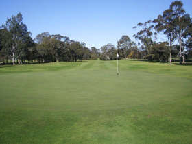 Maffra Golf Club - Accommodation Australia