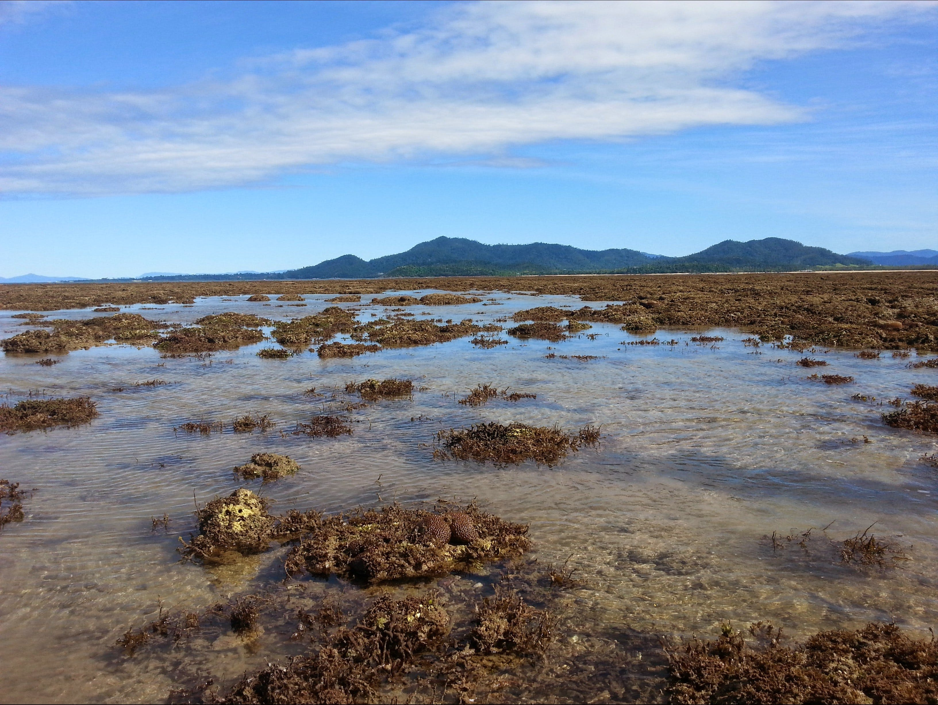 Walk to the Reef - Accommodation Australia