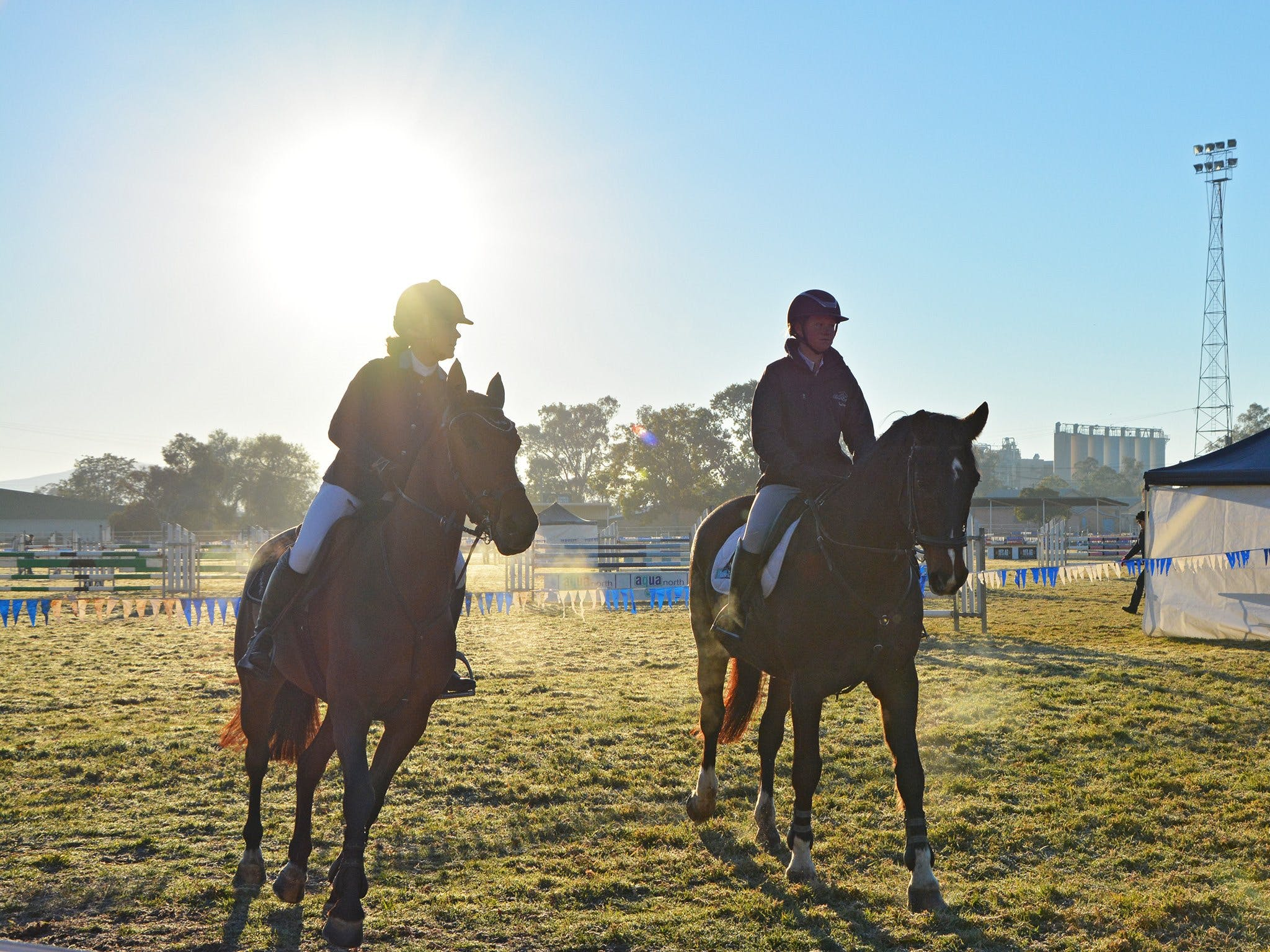 Gunnedah Showjumping Festival - Accommodation Australia